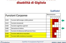 Screenshot REINSERIMENTO OCCUPAZIONALE LAVORATORI POST INFORTUNIO