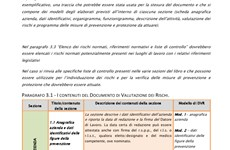 Screenshot MANUALE TECNICO E CHECK LIST PER RLS E RLST